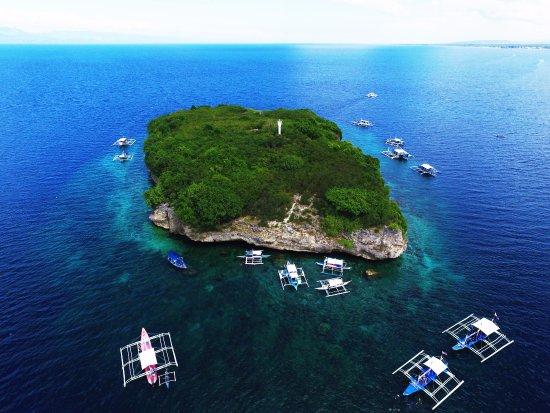 pescador island Moalboal